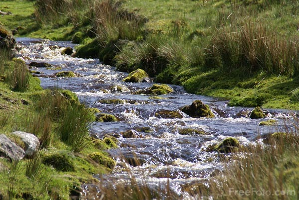 Freshwater Systems ? Rivers and Streams